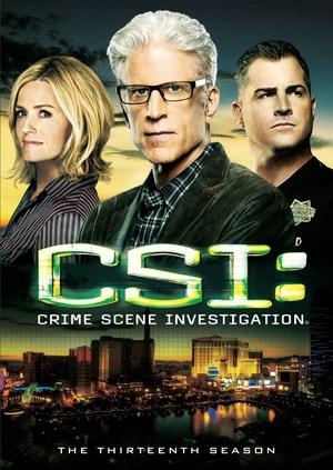 犯罪现场调查 第十三季
