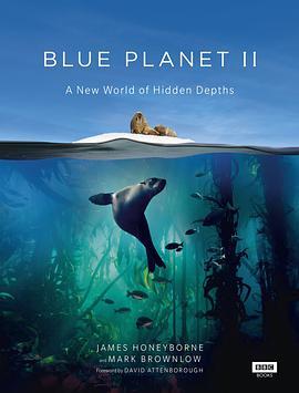 蓝色星球2