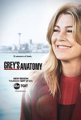 实习医生格蕾 第十五季